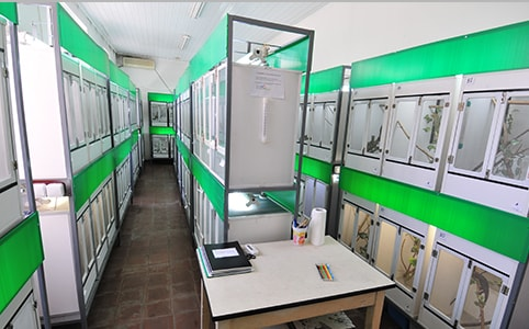 Reptile breeding center