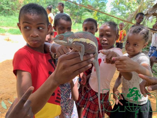BION at Madagascar