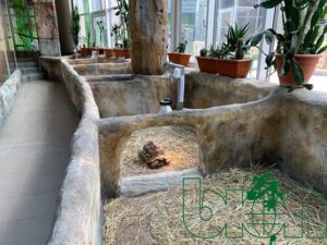 captive-bred reptiles laboratory 001