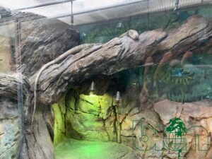 captive-bred reptiles laboratory 003